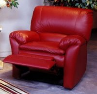 Marlin - Recliner by Omnia